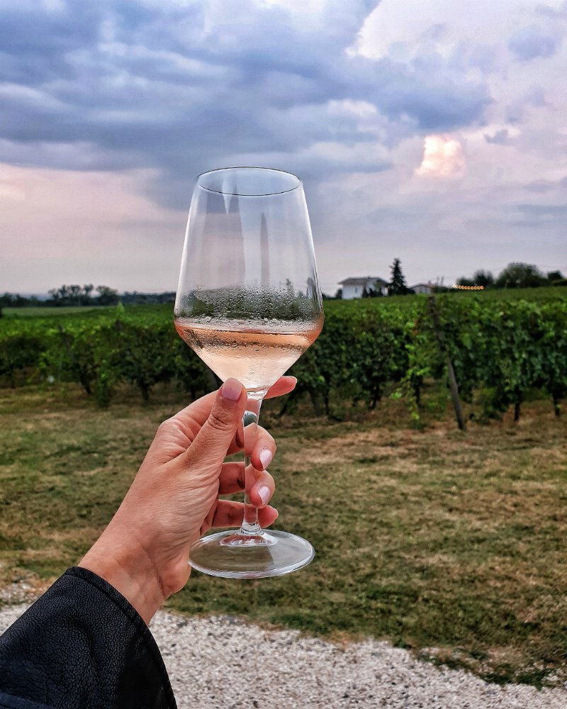 Bicchiere vigne