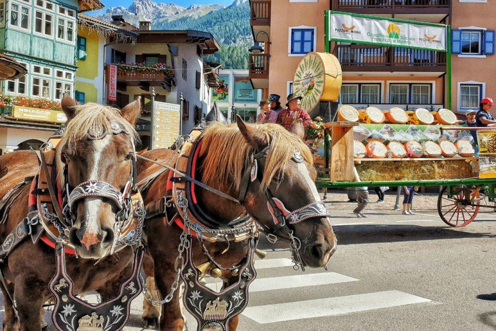 Desmonteada cavalli